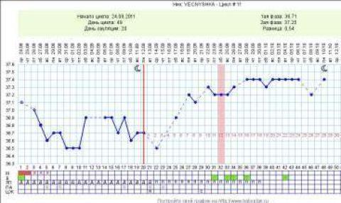 Беременный график